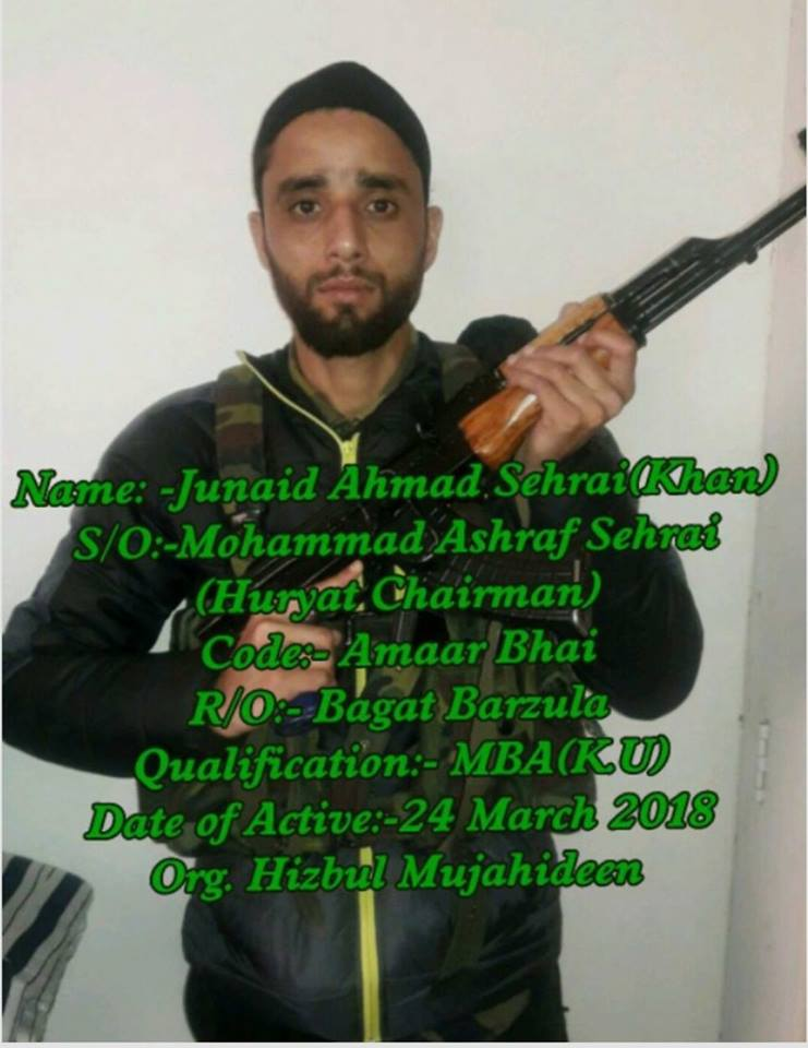 Son of Geelani's successor as party chief joins Hizbul Mujahideen